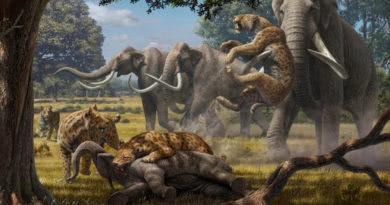 Clifford D. Simak'tan bir zamanda yolculuk klasiği: 'Project Mastodon' – Bölüm I