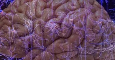 beyninize download yapmak ister miydiniz?