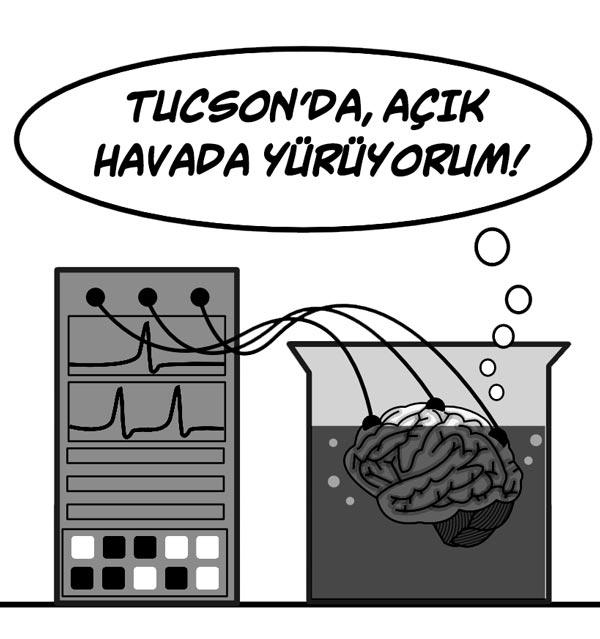 kavanozdaki beyin